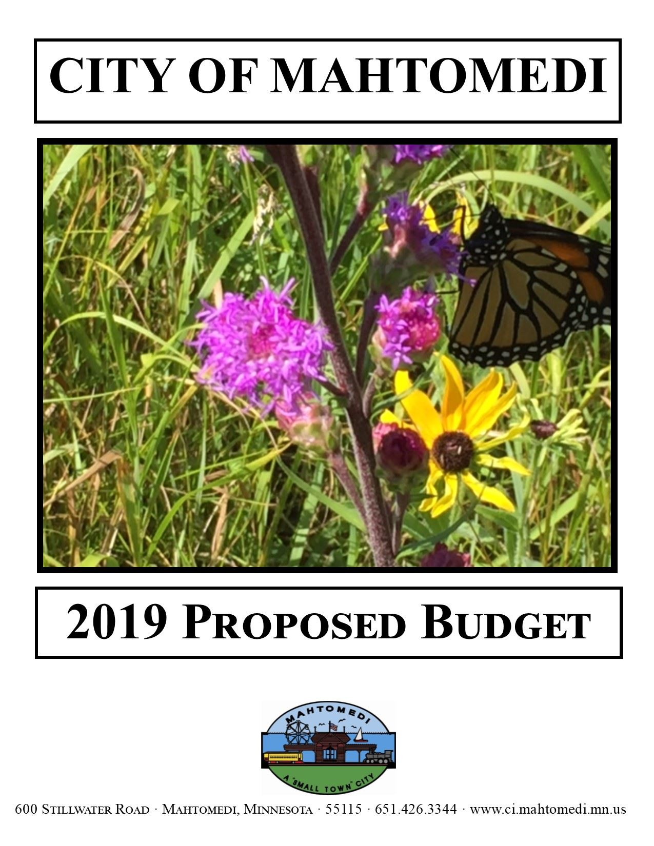 2019 Proposed Budget Cover (IMAGE)
